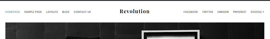 Revolution Pro Theme Header